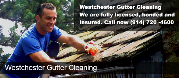Westchester NY Gutter Cleaning